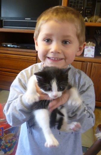 Zacky holding 22 toed male tuxedo kitten