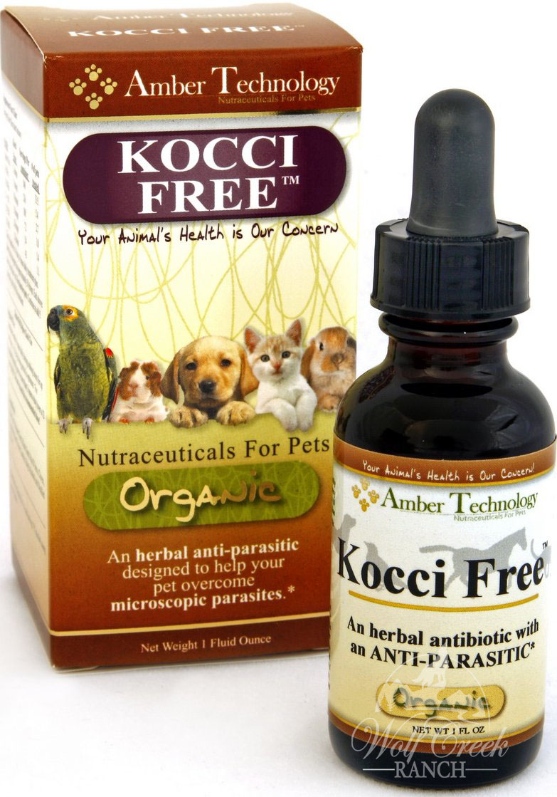 Kocci Free helps eliminate coccidia and giardia protozoan!  Buy Kocci Free to prevent coccidia infection or treat it!