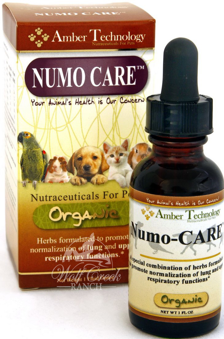 Numo Care is an organic natural respiratory formula for pets.  Buy Numo Care for your pet's bronchial or pneumonia infection.