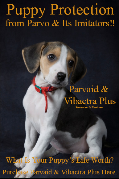 Parvaid and Vibactra Plus are natural organic effective parvo treatment and prevention products.  Buy these excellent parvo treatment remedies today!